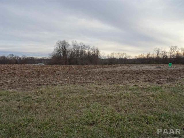 Route 150, Brimfield, IL 61517 (#1201807) :: Adam Merrick Real Estate
