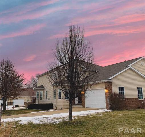 1110 Eaglet Court, Lacon, IL 61540 (#PA1201845) :: Killebrew - Real Estate Group