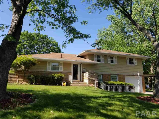 1615 Gaylord, Peoria, IL 61614 (#PA1201922) :: Adam Merrick Real Estate