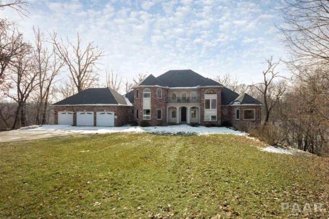 3906 W Crestridge Court, Peoria, IL 61615 (#PA1202007) :: The Bryson Smith Team