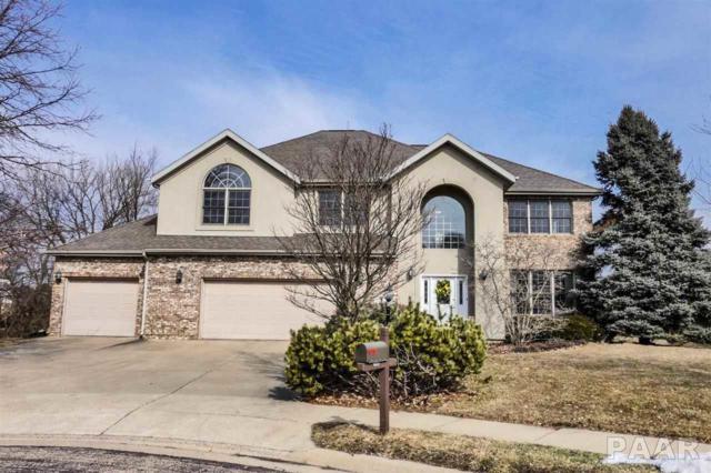 2807 W Windflower Court, Peoria, IL 61615 (#PA1202083) :: Adam Merrick Real Estate