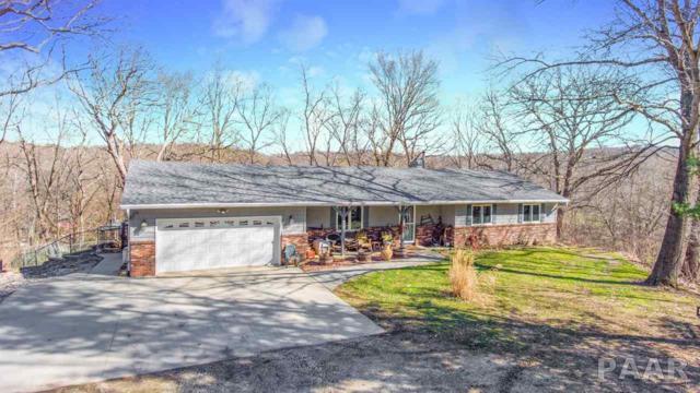 228 E Hicks Hollow Road, Chillicothe, IL 61523 (#PA1202218) :: The Bryson Smith Team