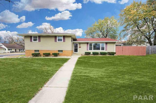 2523 W Castle Court, Peoria, IL 61614 (#1202221) :: Adam Merrick Real Estate