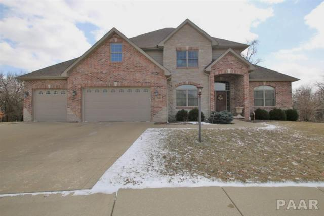 2840 W Playden Circle, Peoria, IL 61615 (#1202284) :: Adam Merrick Real Estate