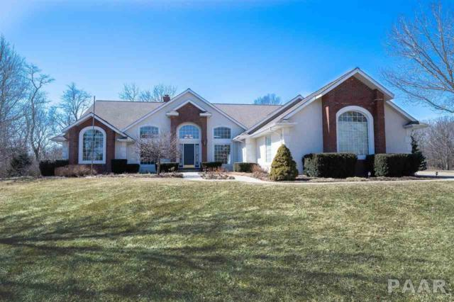 12520 W Downing Place, Brimfield, IL 61517 (#PA1202377) :: Adam Merrick Real Estate