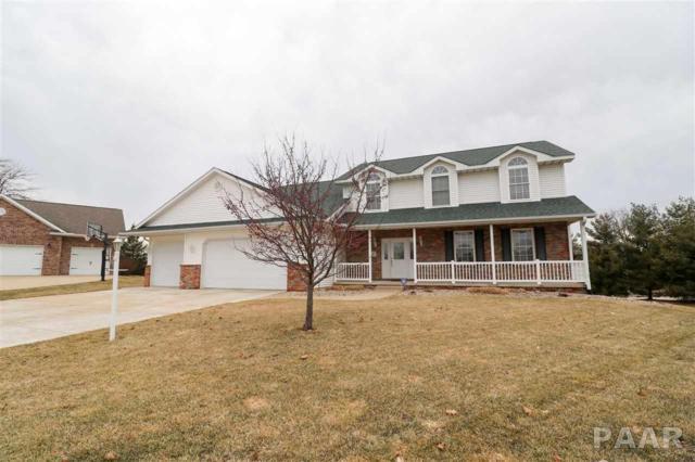 9 Winterberry Court, Washington, IL 61571 (#1202468) :: Adam Merrick Real Estate