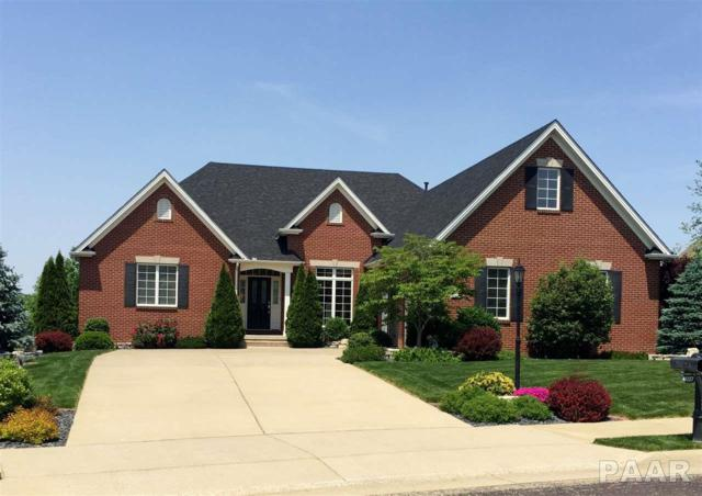 4027 W Talus Court, Peoria, IL 61615 (#PA1202644) :: The Bryson Smith Team