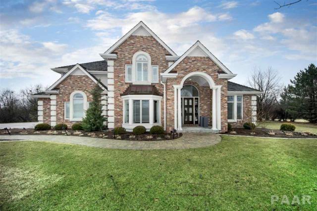 10526 N Osage Court, Peoria, IL 61615 (#PA1202872) :: Adam Merrick Real Estate