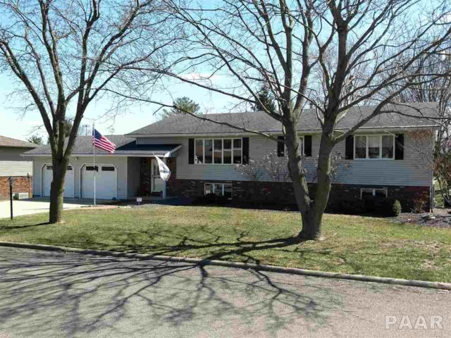 110 Knollaire Street, Metamora, IL 61548 (#PA1203184) :: RE/MAX Preferred Choice