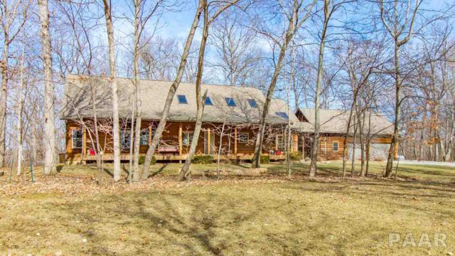 650 Coon Creek Road, Metamora, IL 61548 (#PA1203312) :: RE/MAX Preferred Choice