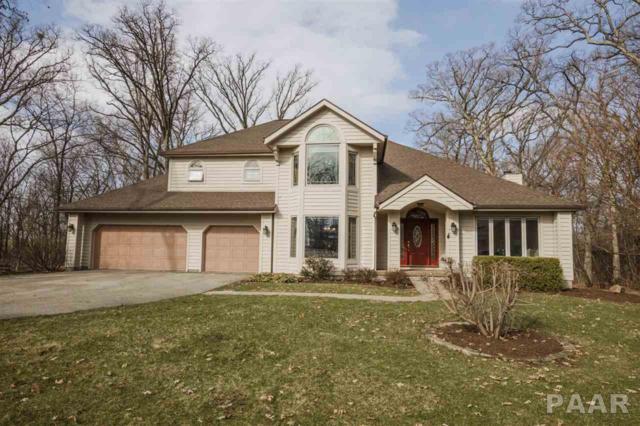 1341 Timber Oaks Drive, Metamora, IL 61548 (#PA1203366) :: RE/MAX Preferred Choice