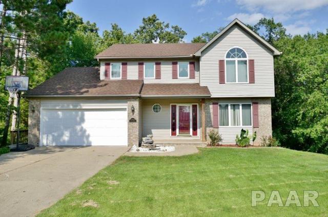 10503 W Merlin Court, Mapleton, IL 61547 (#PA1203425) :: Adam Merrick Real Estate
