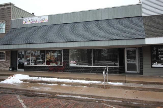 108 N Davenport, Metamora, IL 61548 (#PA1203429) :: Adam Merrick Real Estate