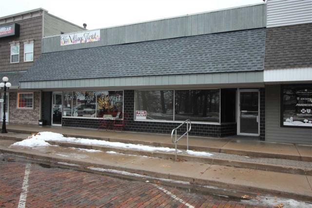 108 N Davenport, Metamora, IL 61548 (#PA1203430) :: Adam Merrick Real Estate