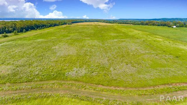 000 Conservation Lane, Lowpoint, IL 61545 (#PA1203453) :: The Bryson Smith Team
