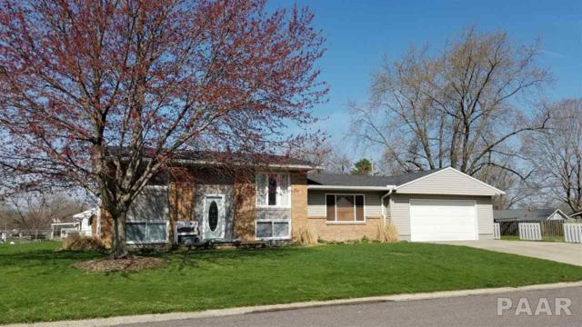 306 S Meadowview Lane, Washington, IL 61571 (#PA1203802) :: Adam Merrick Real Estate