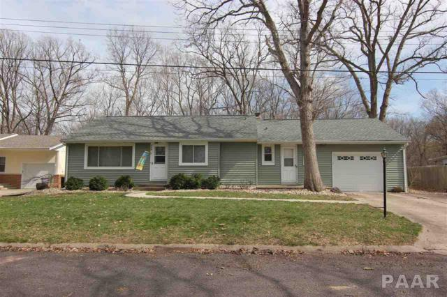 110 Circle Drive, East Peoria, IL 61611 (#PA1203823) :: Adam Merrick Real Estate
