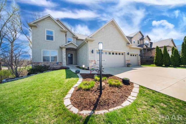 10102 N Brookshire Drive, Peoria, IL 61615 (#PA1203900) :: Adam Merrick Real Estate
