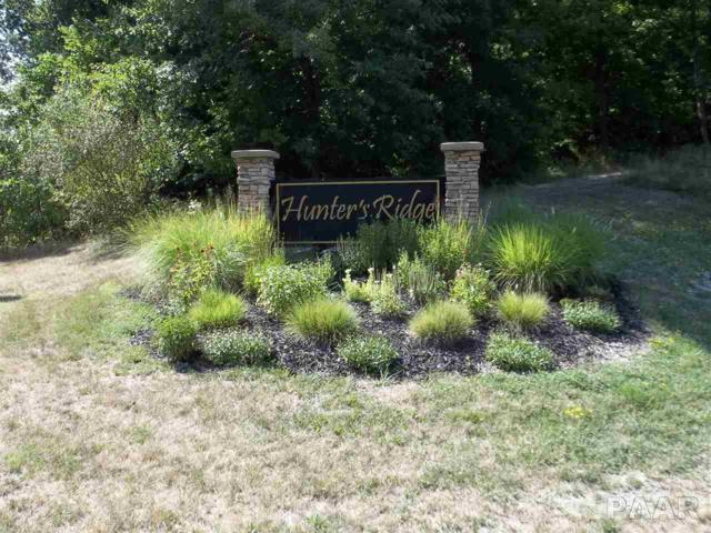 Lot 34 Deer Run Drive, Bartonville, IL 61607 (#PA1203922) :: Adam Merrick Real Estate