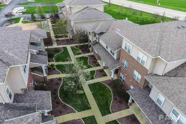 11217 N Oakwood Drive, Peoria, IL 61615 (#PA1204011) :: RE/MAX Preferred Choice
