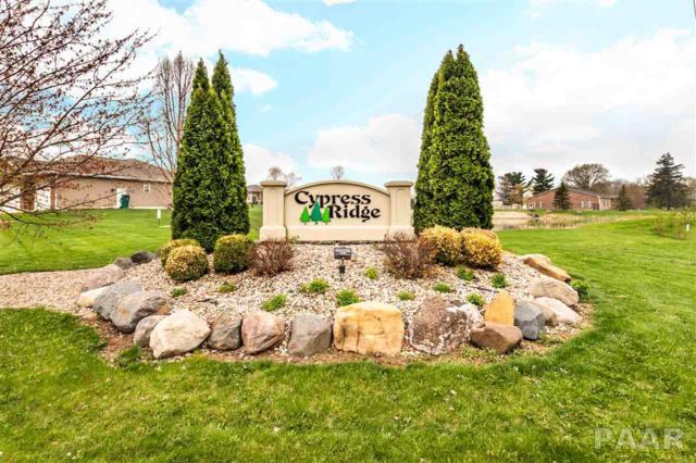 103 Ruth Court, Washington, IL 61571 (#PA1204050) :: Adam Merrick Real Estate