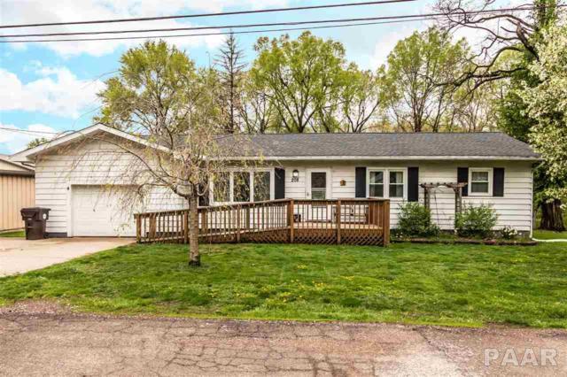 208 Lockview Street, Creve Coeur, IL 61610 (#PA1204254) :: Adam Merrick Real Estate