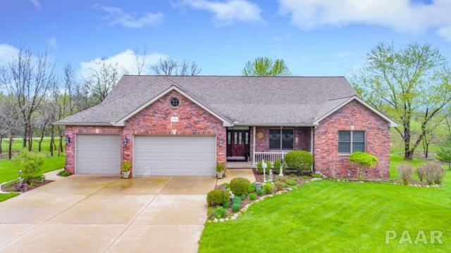 2221 Lakeview, Dahinda, IL 61428 (#PA1204263) :: The Bryson Smith Team