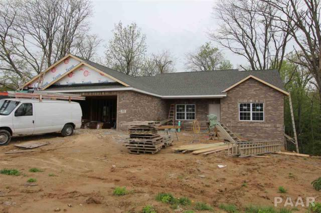 302 Saddle Rock Drive, Washington, IL 61571 (#PA1204533) :: Adam Merrick Real Estate