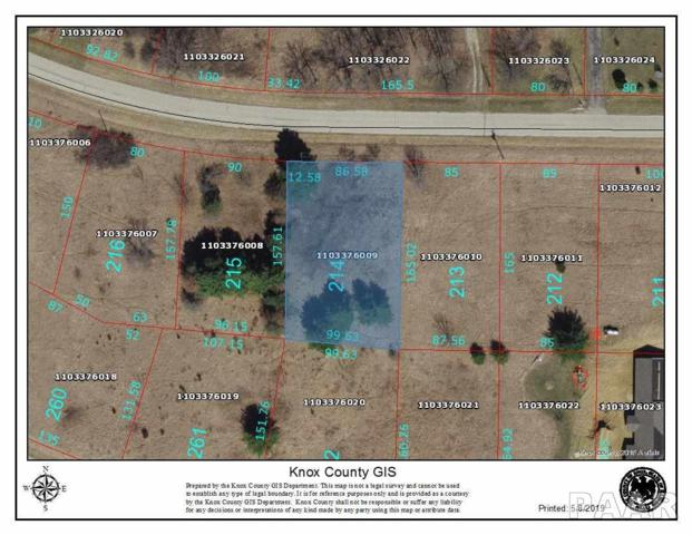 2214 Lakeview Road North, Dahinda, IL 61428 (#PA1204545) :: The Bryson Smith Team