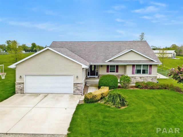 808 Swedenburg Road, Knoxville, IL 61448 (#PA1204606) :: The Bryson Smith Team