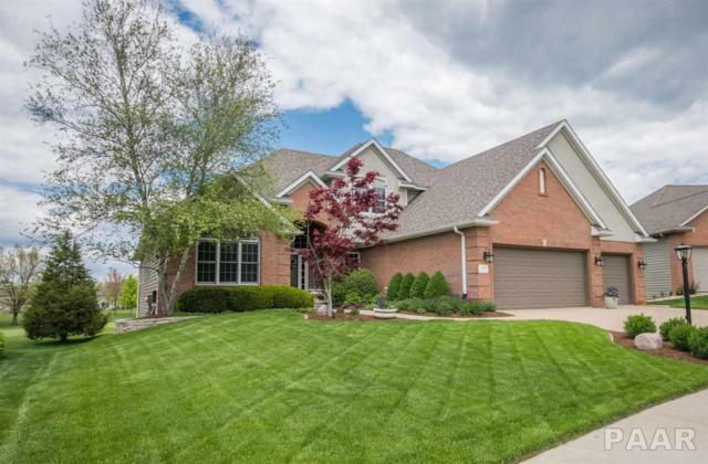 4023 W Talus Court, Peoria, IL 61615 (#PA1204733) :: The Bryson Smith Team