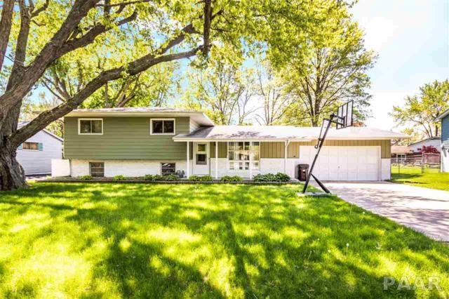 8650 N Picture Ridge Road, Peoria, IL 61615 (#PA1204786) :: Adam Merrick Real Estate