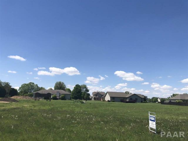 Lot 4 N Danbury Court, Chillicothe, IL 61523 (#PA1204801) :: The Bryson Smith Team