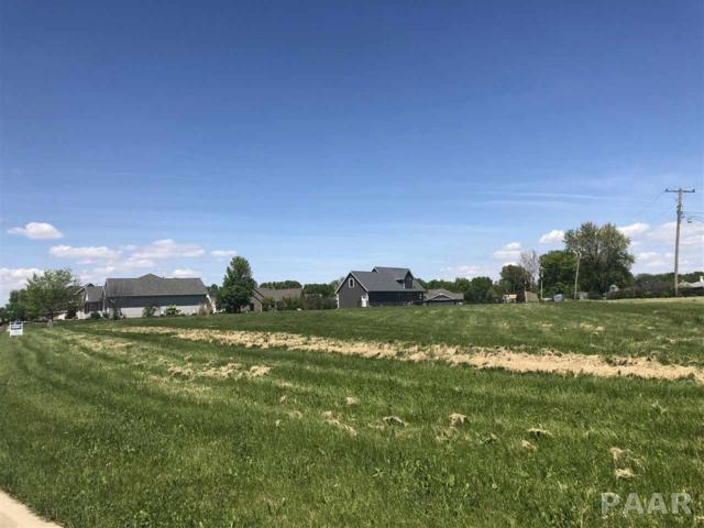 Lot 26 N Ashton Parkway, Chillicothe, IL 61523 (#PA1204806) :: The Bryson Smith Team