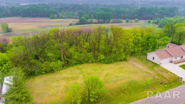 Lot 20 N Deer Bluffs Drive, Chillicothe, IL 61523 (#PA1204865) :: The Bryson Smith Team