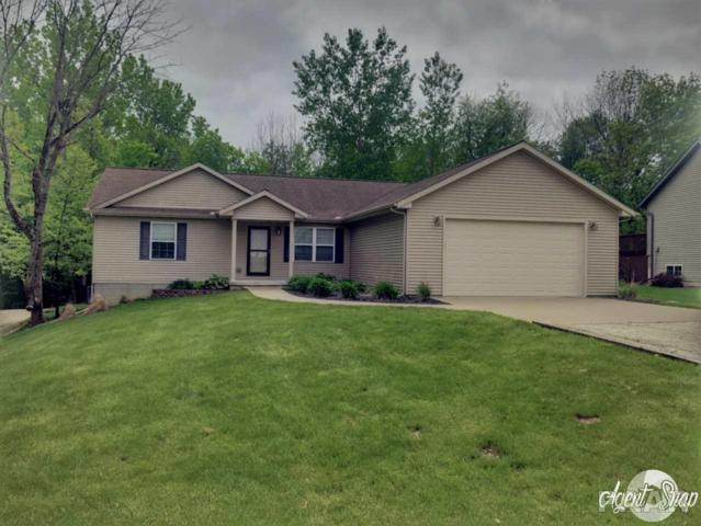 1117 S Lakeview Road, Dahinda, IL 61428 (#PA1204907) :: The Bryson Smith Team