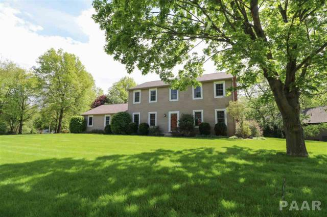 608 W Hickory Grove Court, Dunlap, IL 61525 (#PA1204911) :: The Bryson Smith Team