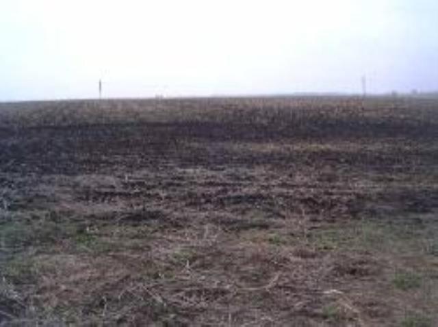 0 W Alta Lane, Dunlap, IL 61525 (#PA1205793) :: Adam Merrick Real Estate