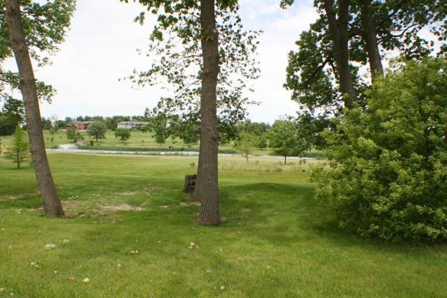 1324K Springbrook Lane, De Witt, IA 52742 (#QC172) :: Adam Merrick Real Estate