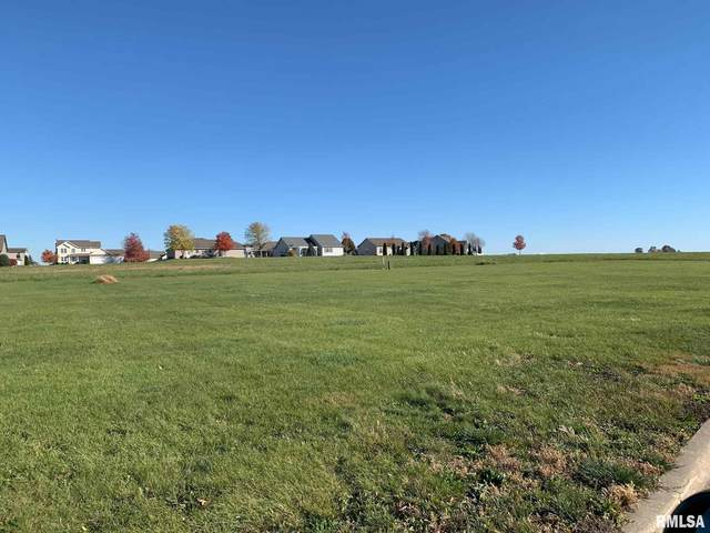 48 Candlewick, Minier, IL 61759 (#PA1206043) :: Nikki Sailor | RE/MAX River Cities