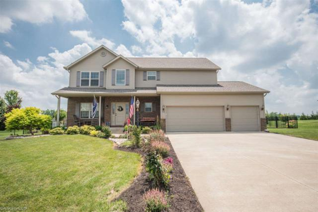 506 Somerset Drive, Germantown Hills, IL 61548 (#PA1206601) :: RE/MAX Preferred Choice