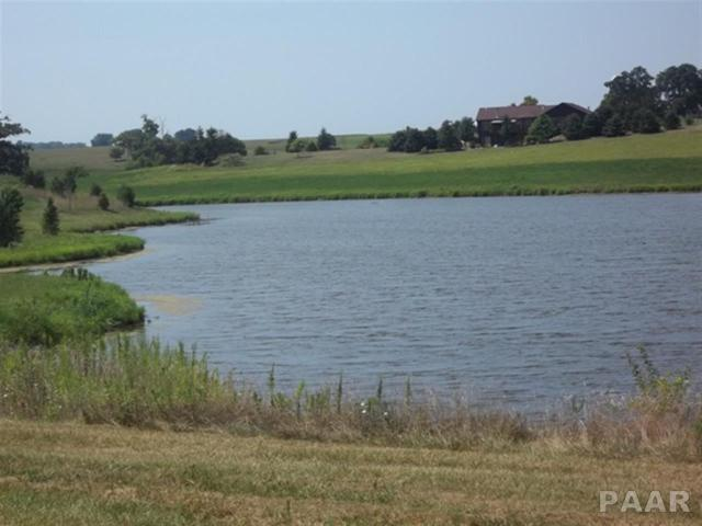 Lot 4 Remmert Farms, Eureka, IL 61530 (#PA1206820) :: The Bryson Smith Team
