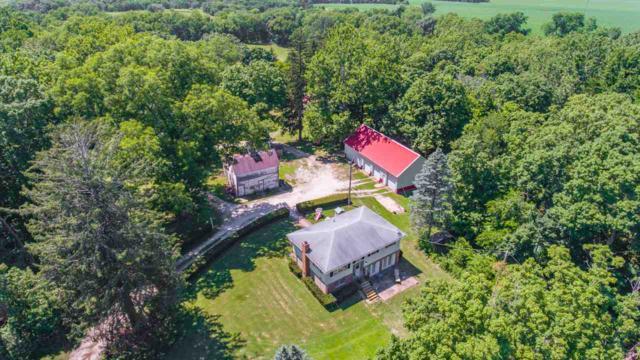 1305 N Cramer Road, Elmwood, IL 61529 (#PA1206849) :: Adam Merrick Real Estate