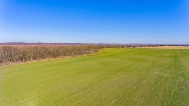000 County Road 2200 North, Lowpoint, IL 61545 (#PA1206891) :: Killebrew - Real Estate Group