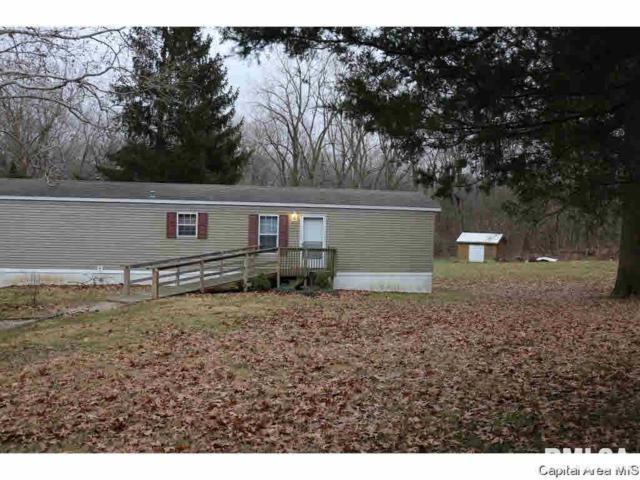 6880 Mottar, Rochester, IL 62563 (#CA1263) :: Killebrew - Real Estate Group