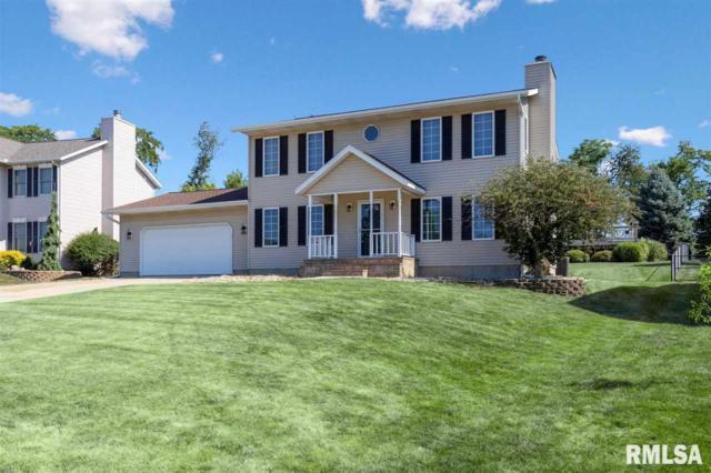 1011 Valley View Drive, Fulton, IL 61252 (#QC4204940) :: Adam Merrick Real Estate