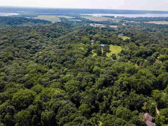 Spring Creek Road, Washington, IL 61571 (#PA1207897) :: Adam Merrick Real Estate