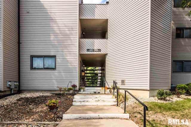 7221 N Lakeside Court, Peoria, IL 61614 (#PA1208829) :: Adam Merrick Real Estate