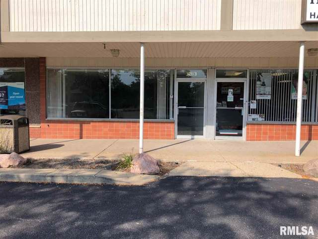 3813 N Sterling, Peoria, IL 61614 (#PA1208872) :: Adam Merrick Real Estate
