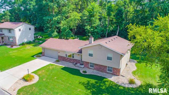 49 Country Lane, East Peoria, IL 61611 (#PA1208954) :: The Bryson Smith Team
